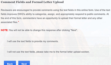 Picture of Comment Fields and Formal Letter Upload page of form.