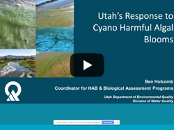 Michelle Deras with Division of Drinking Water and Ben Holcomb with the Division of Water Quality discuss how the two agencies address harmful algal blooms in Utah.