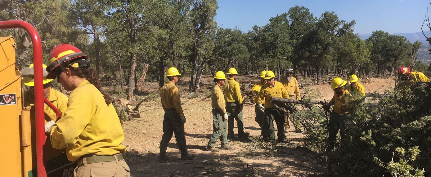 Fire Crews at the Dollar Ridge Fire in Utah.