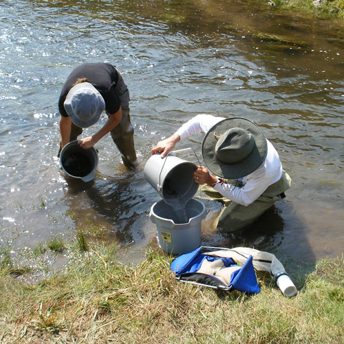 Scientists from the Division of Water Quality take samples to check for E. coli