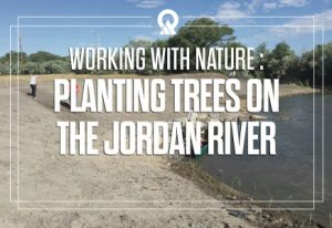 Working with Nature : Planting Trees on the Jordan River
