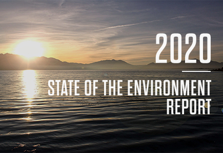 2020 State of the Environment