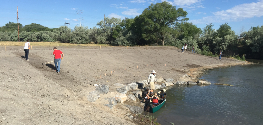 Volunteers planting trees along the Jordan River