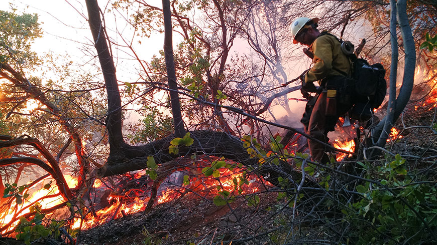 Wildfire Photo by Lone Peak Conservation Center