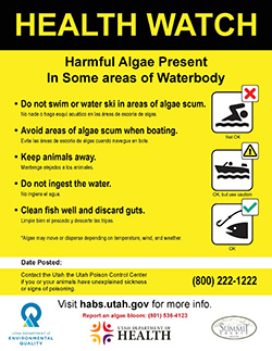 Health Watch: Partial Waterbody: Summit County